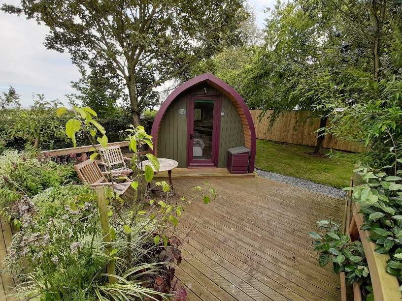 Purple and green wooden glamping pod